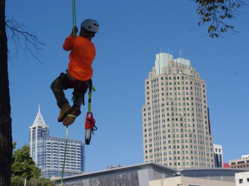 Raleigh-tree-service-21