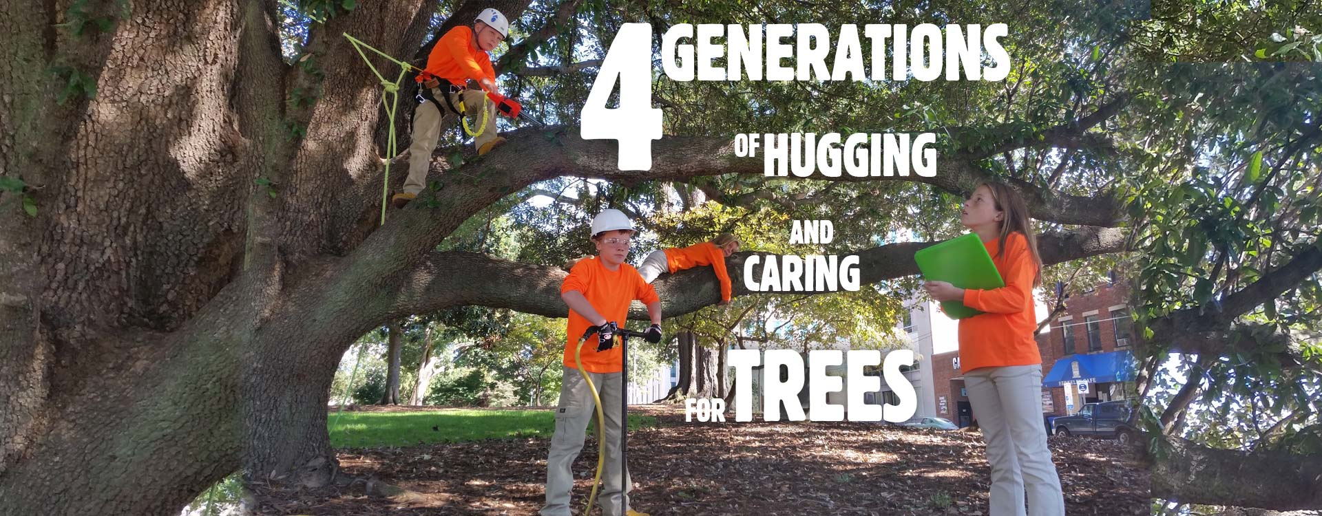Raleigh-Tree-Care