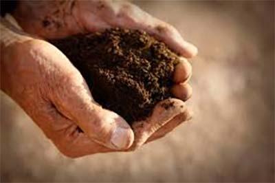 soil-care