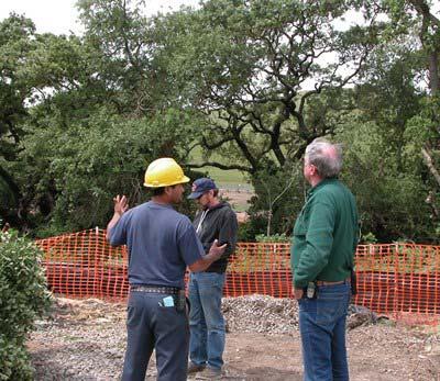 tree-construction-area