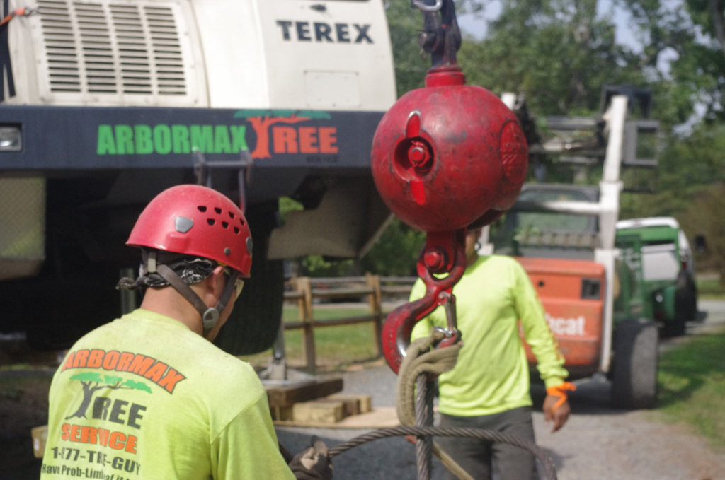 Crane Ball Tree Service