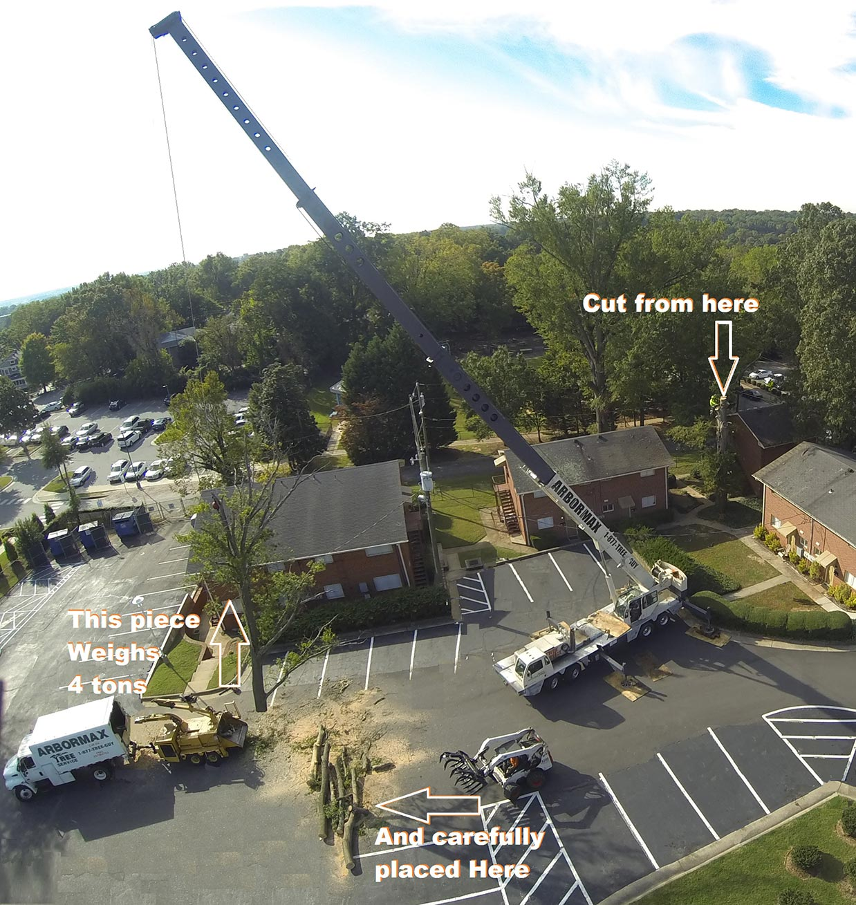 crane-assisted-tree-removal-raleigh