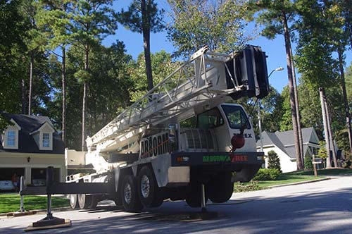 crane-set-up-for-tree-removal