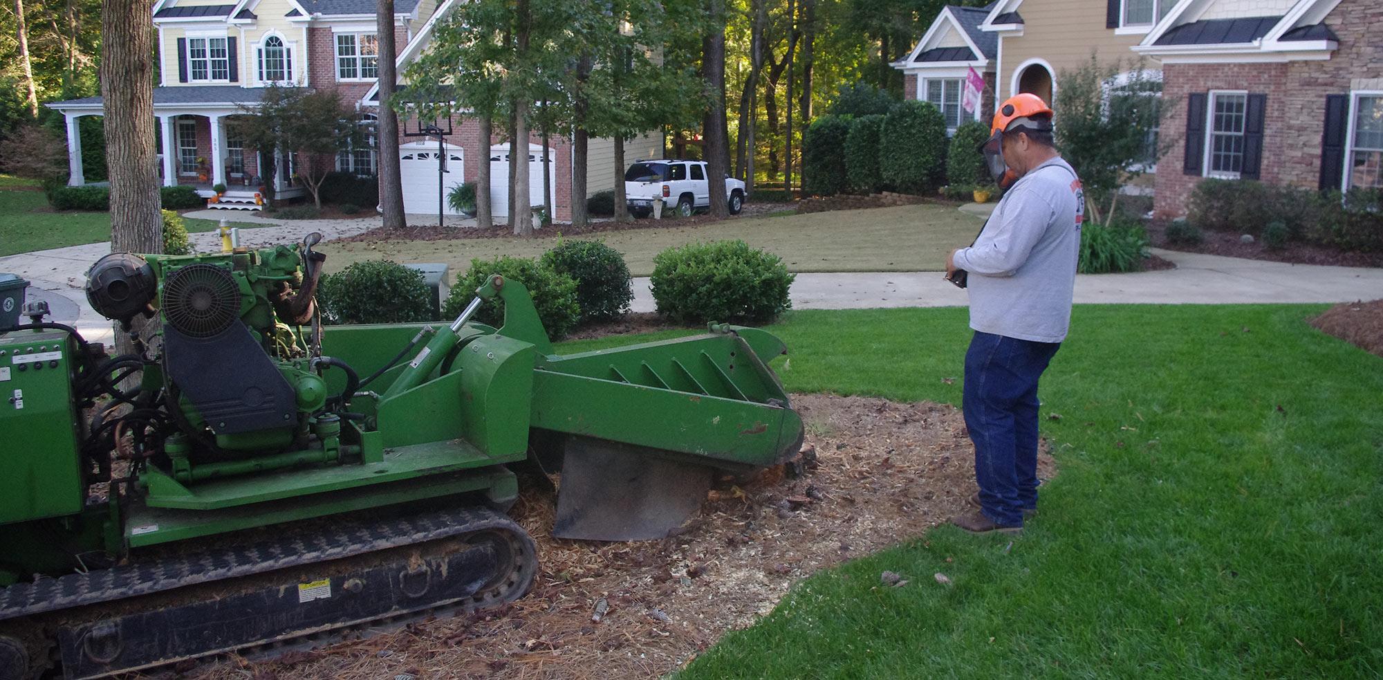 Stump Grinding Service Raleigh