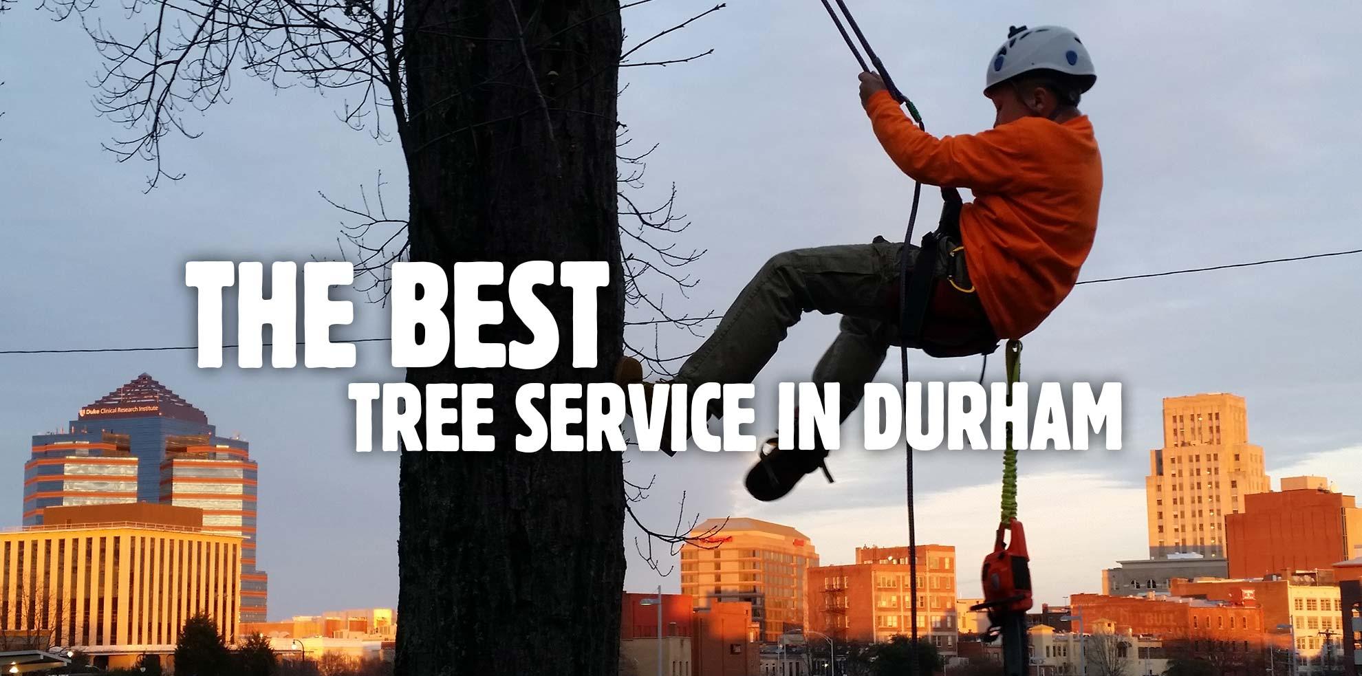 Durham Tree Service