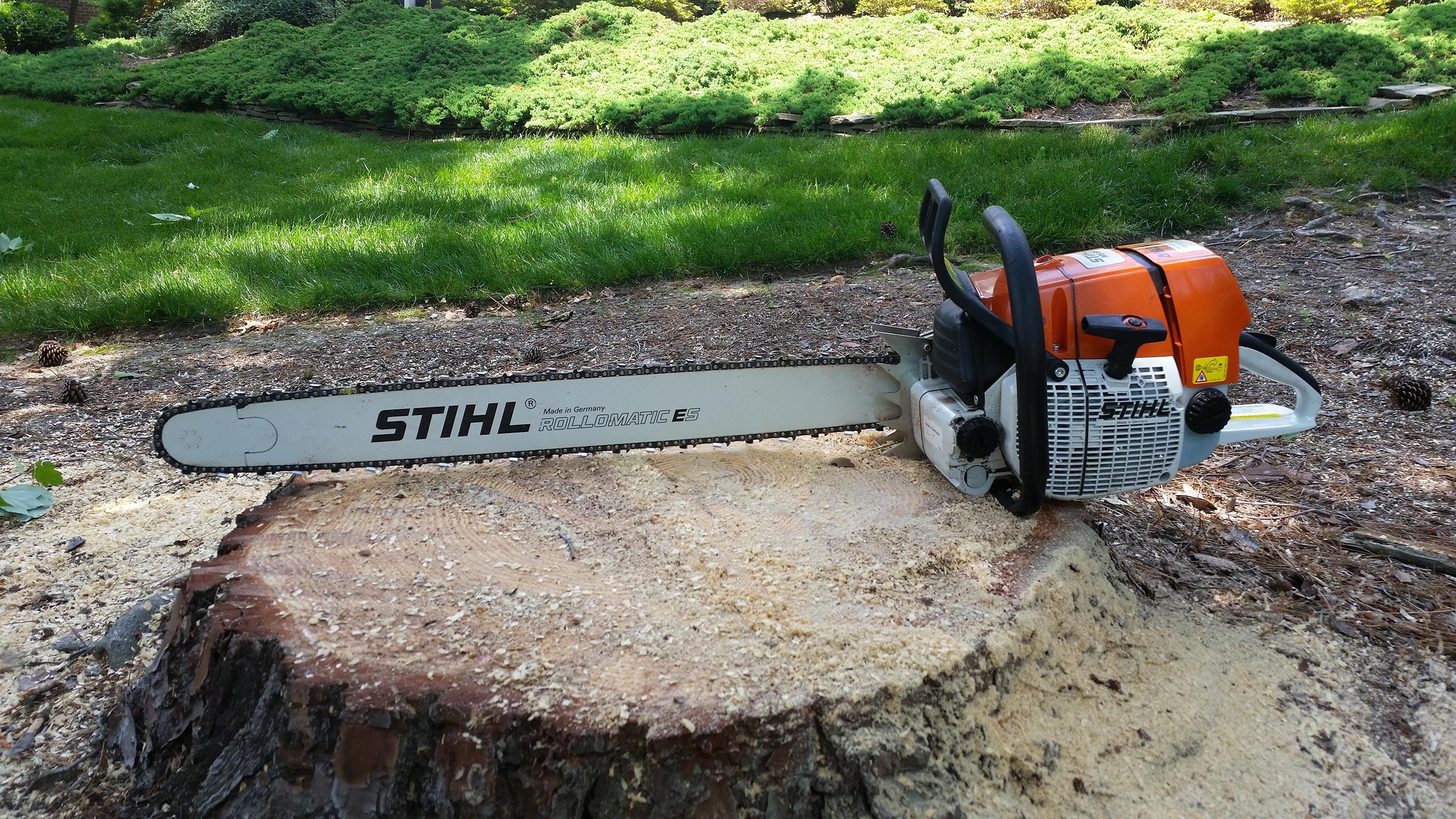 chainsaw-on-stump