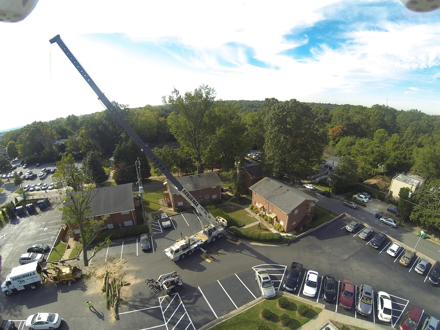 #crane-assisted-tree-removal-raleigh