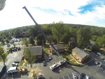 #crane-tree-removal2
