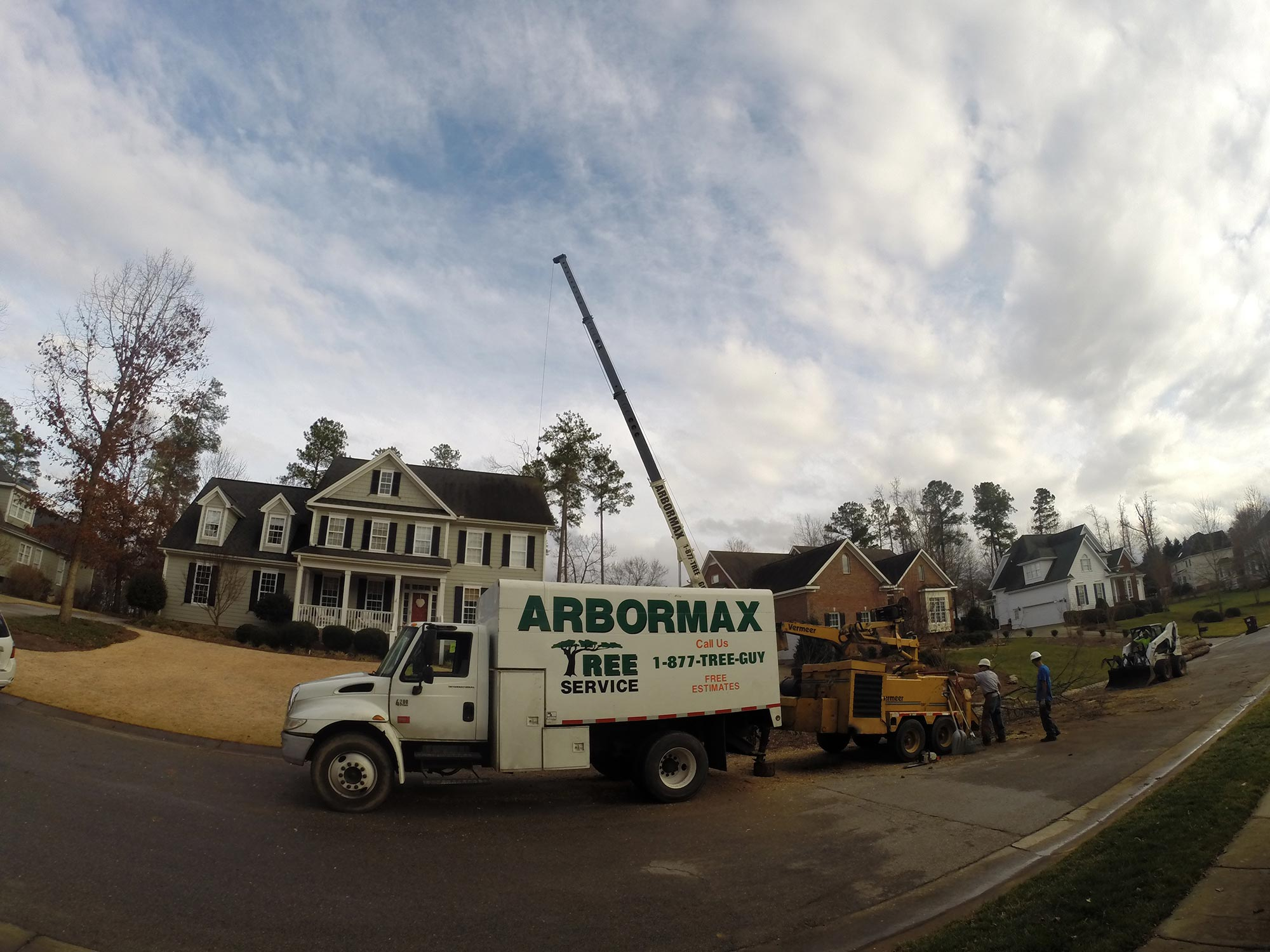 tree-service-raleigh-74