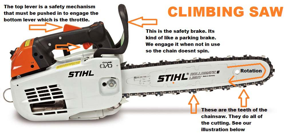 chainsaw raleigh tree service