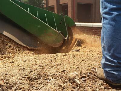 stump grinder