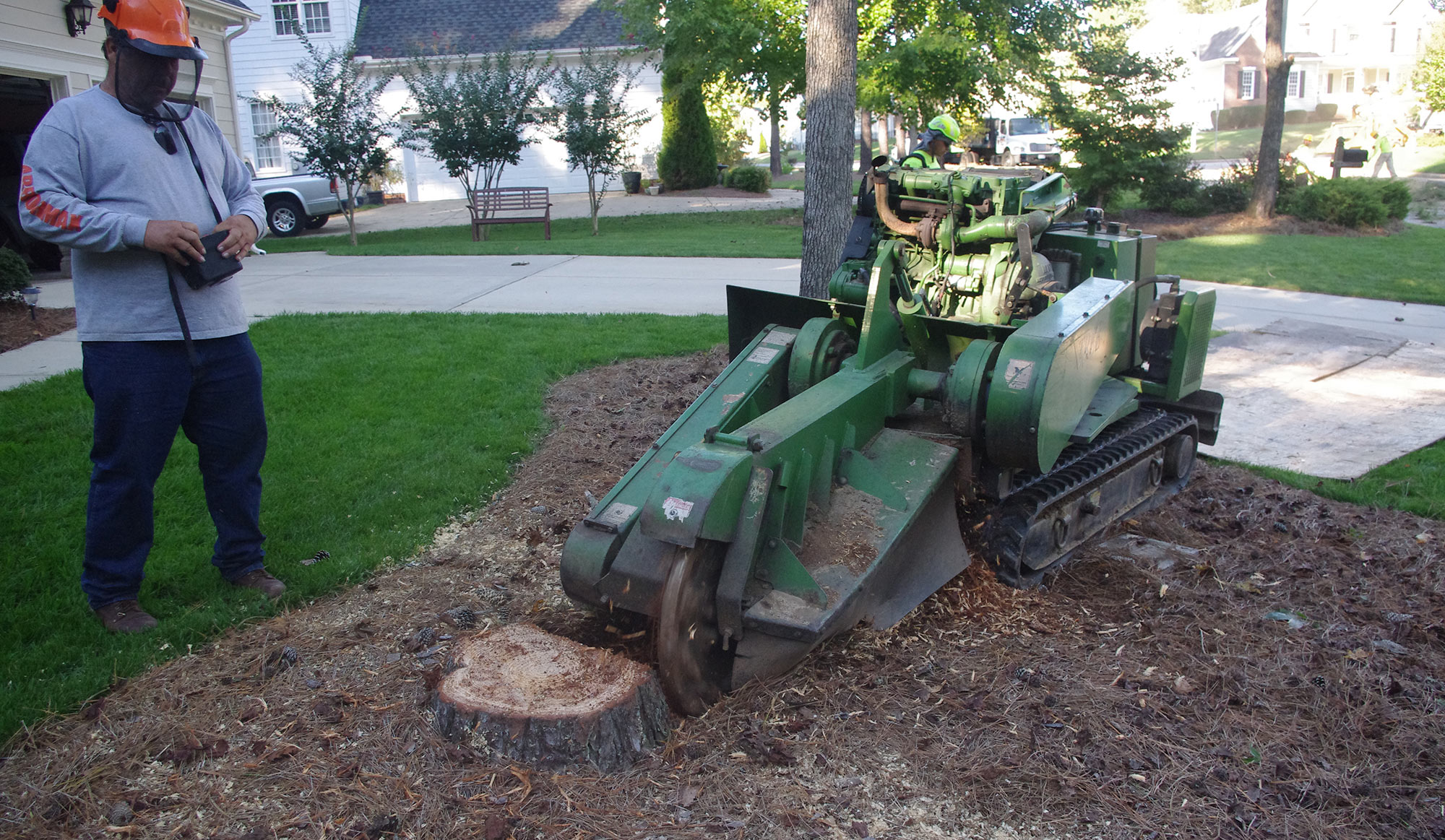 Stump Grinding Arbormax Tree Service
