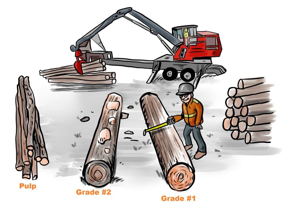 Wood Grade